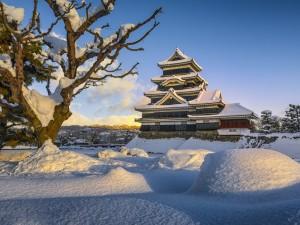 castelul inuyama