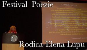 Roena Festival Poezie Benidorm